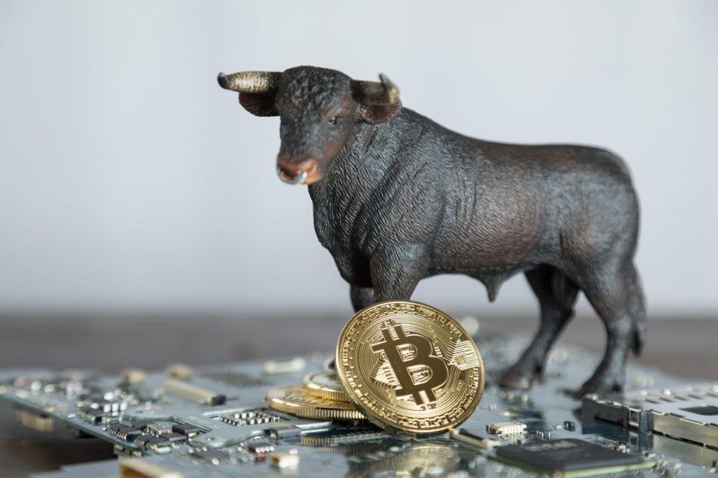 bull bitcoin motherboard