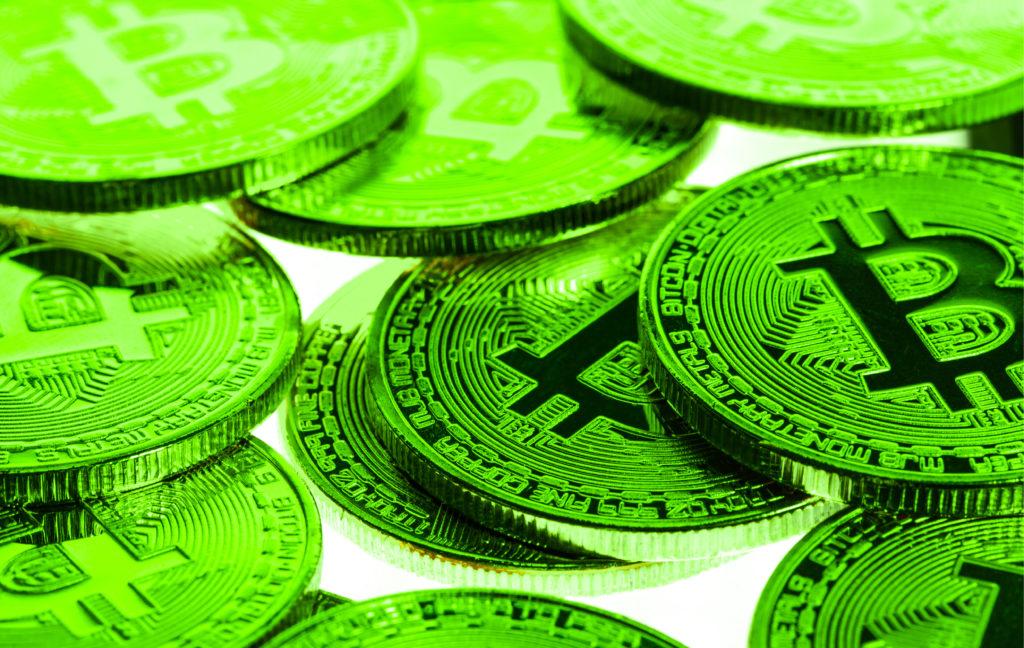 bitcoin halving bull run