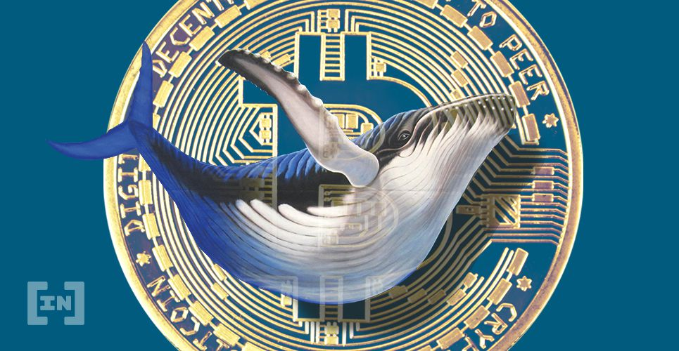 Whale BTC Bitcoin