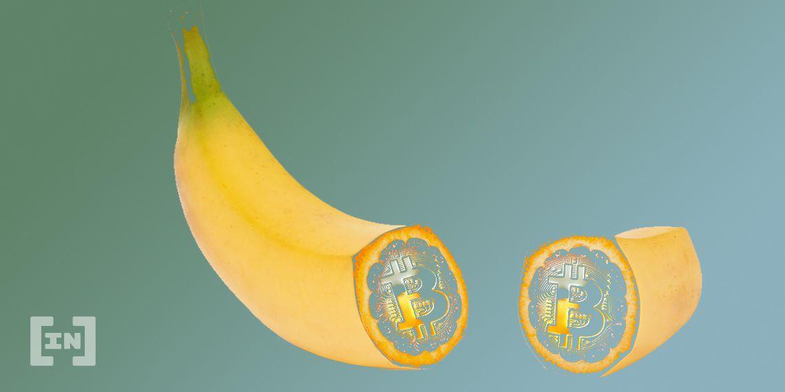 No TikTok Monkey Business for <bold>Nano</bold> Spinoff Banano (BAN)