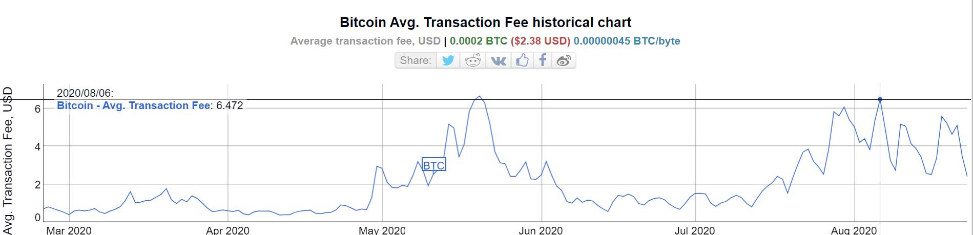 6 months of BTC fees