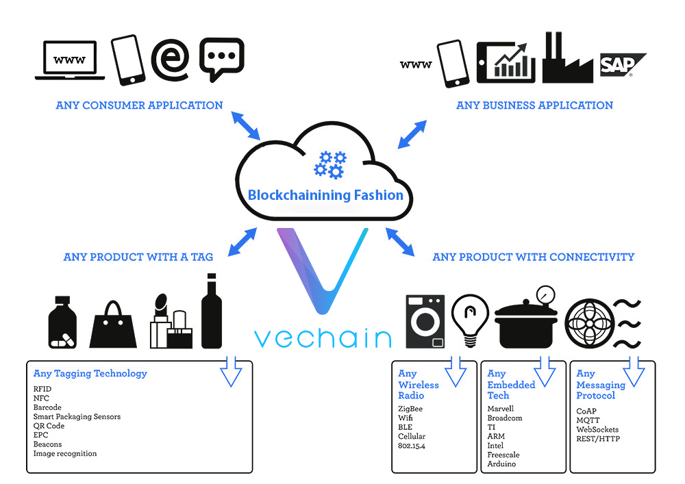 chart of uses for vechain