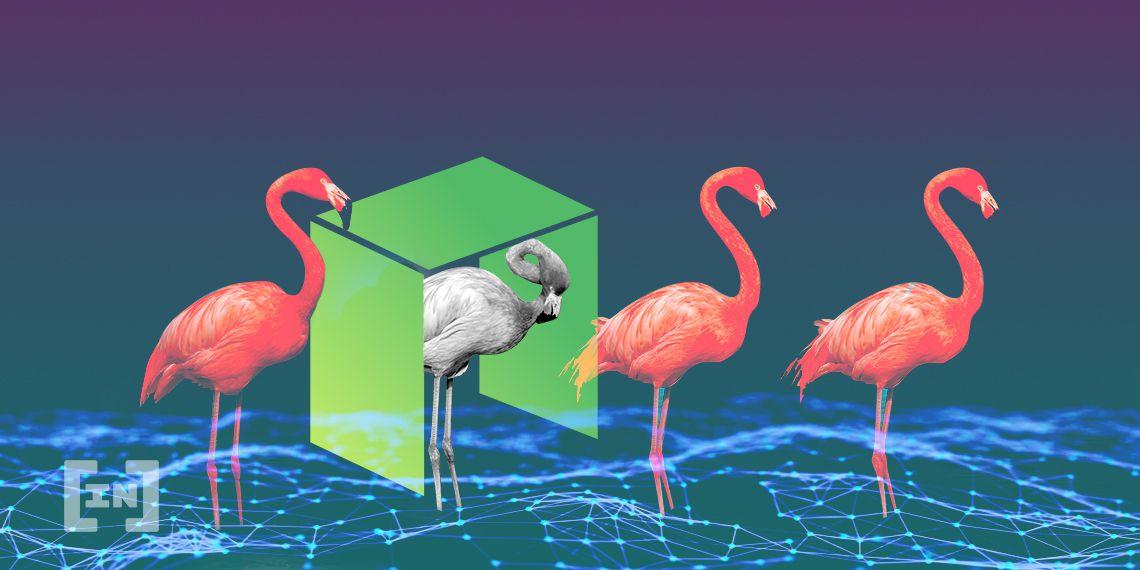 NEO Flamingo Finance FLM
