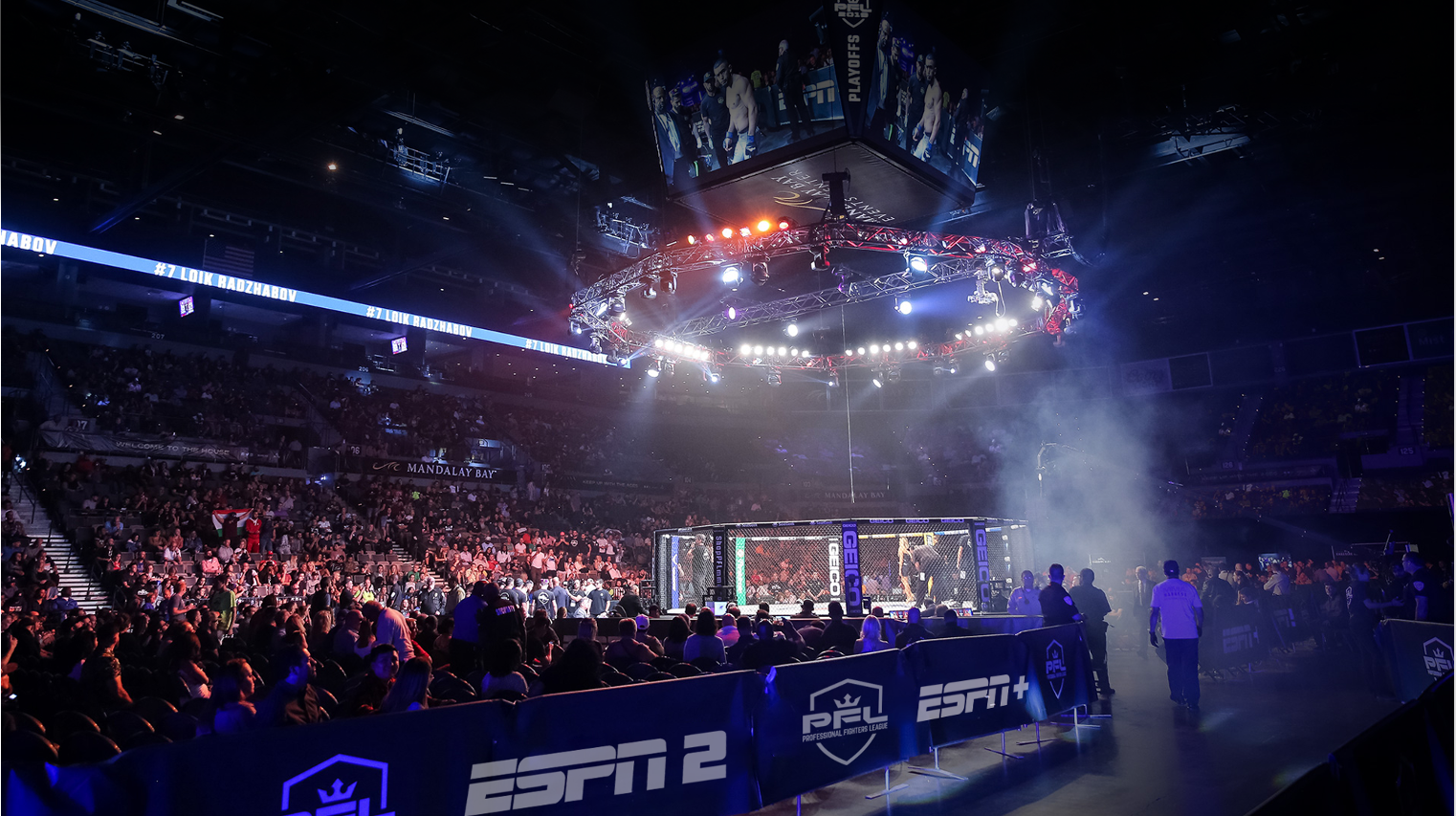 Blockchain Startup Scores Pro Fighters League Deal to Reach MMA Fans