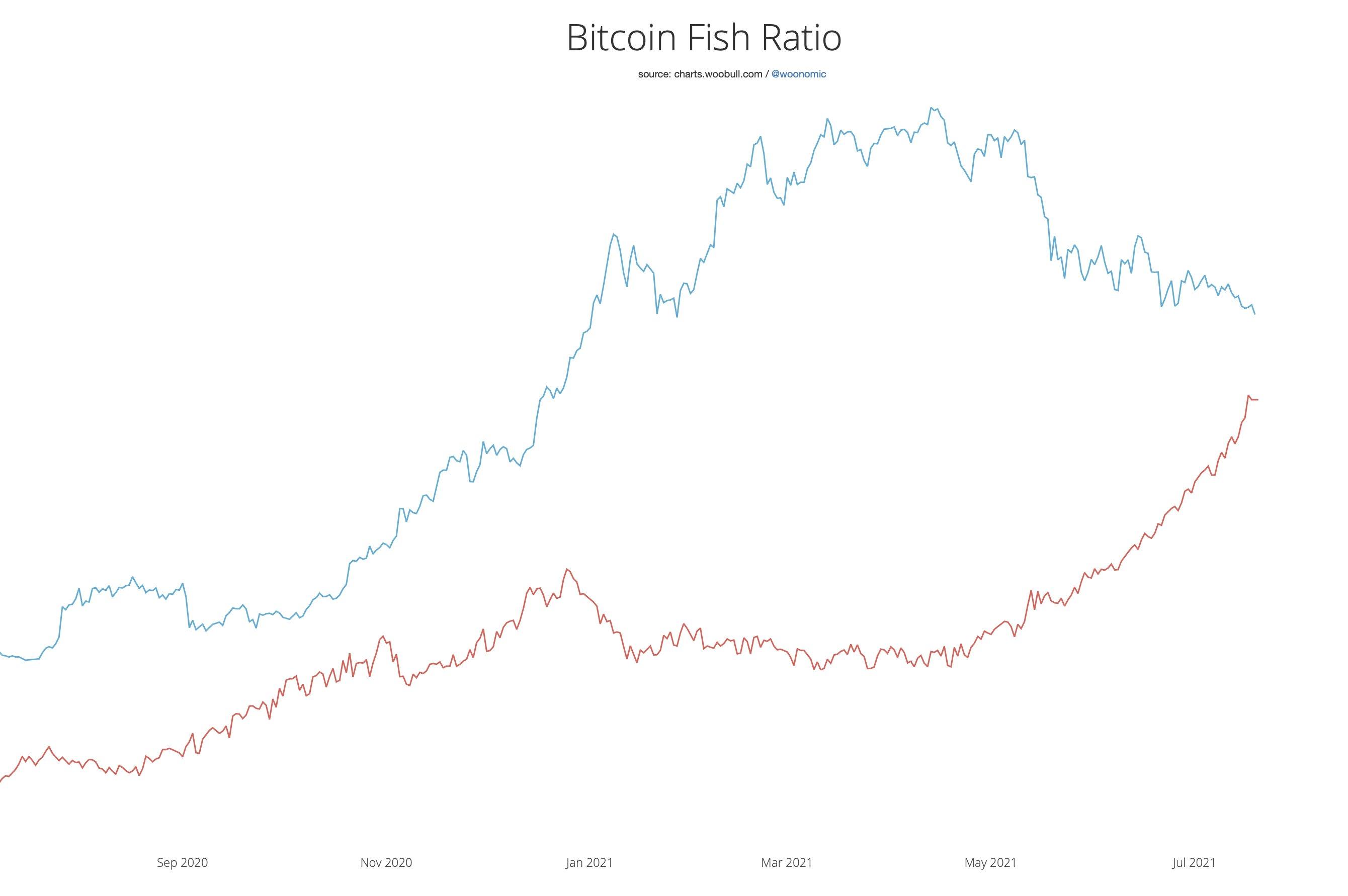 3 Bitcoin Fish Ratio Woo